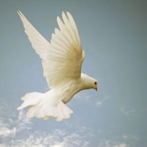 Chi è lo Spirito Santo?