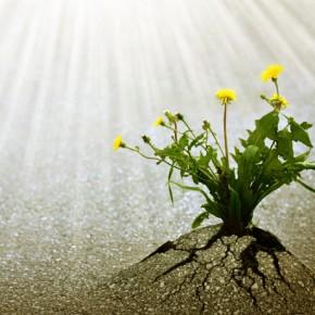 Perché Dio non compie un miracolo grandioso e dà prova della sua esistenza?